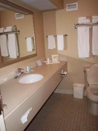 Comfort Inn Aikens Center: Bathroom