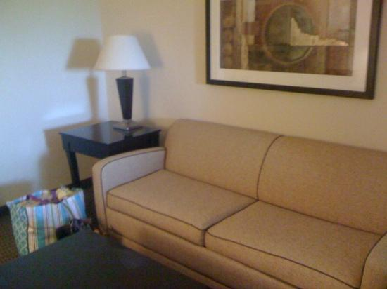 Holiday Inn Express Hotel & Suites Durant: sofa