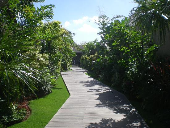 Canggu, Indonesië: The main path along which the villas are laid out