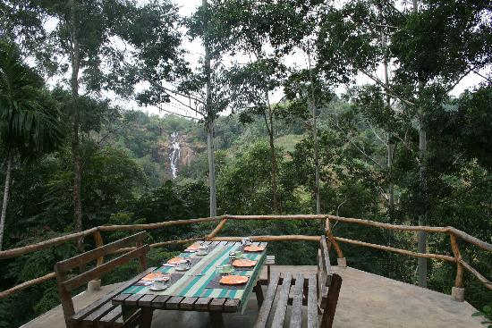 Photos of Waterfalls Homestay, Ella