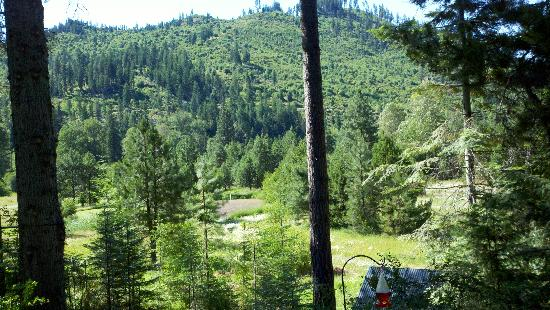 Pine River Ranch: The view from the Natapoc deck