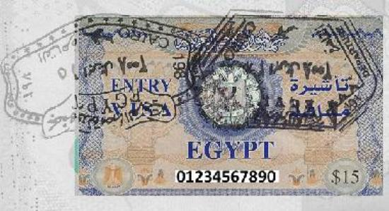 Your Visa looks like this