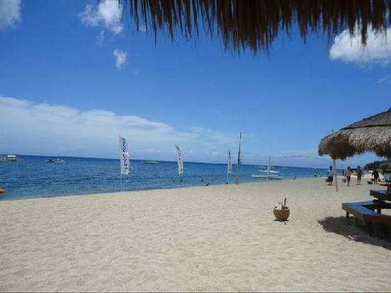 Blue Coral Beach Resort: beach
