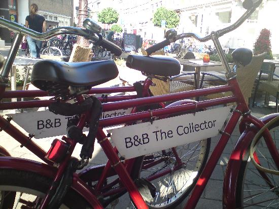 The Collector Bed & Breakfast: The Collector B&B bicycles on a refreshment stop