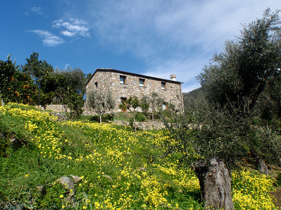 Agriturismo Uliveto nel Parco