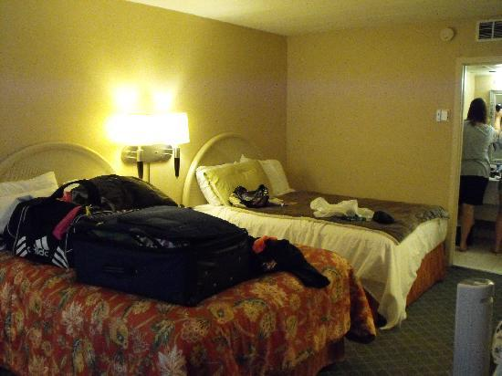 Chapel Hill University Inn: Room