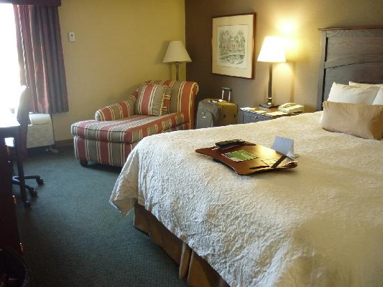 Hampton Inn Pittsburgh - University Center: Room