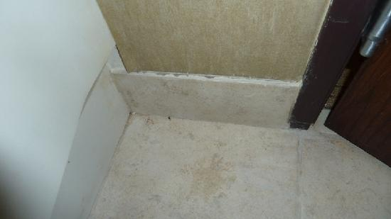 Holiday Inn Norman: Dirty floor