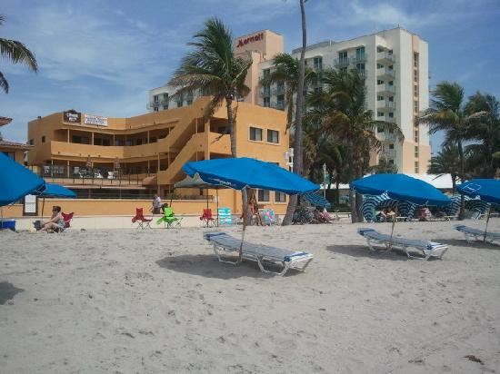 Hollywood Sands Resort: View from beach.