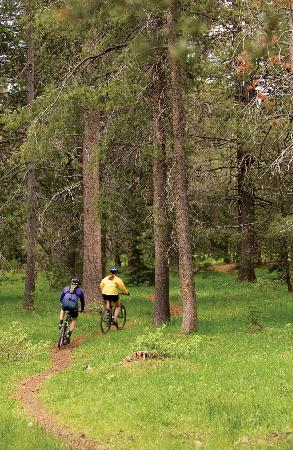 ‪‪Tahoe Mountain Resort Lodging Iron Horse Lodge‬: Mountain Biking Fun In the Summer‬