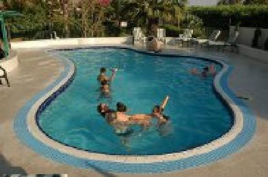Arbel Guest House: Swimming pool
