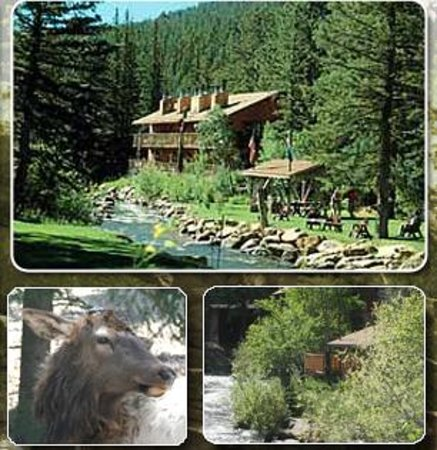 Photo of Ponderosa Lodge Estes Park
