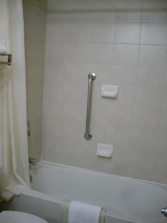Econo Lodge Inn & Suites University: Bathroom