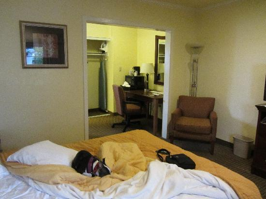 Comfort Inn Monterey Bay: Standard single bed room