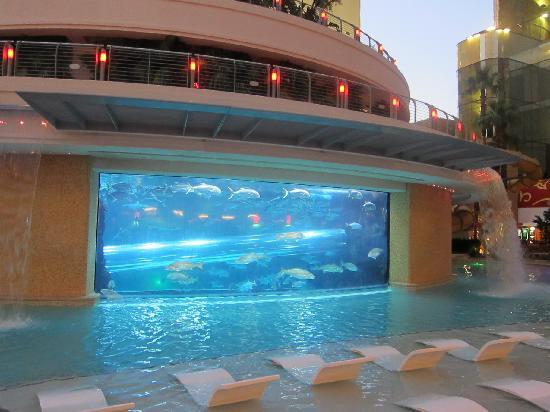 Amazing swimming pools around the world cathy - Las vegas swimming pools ...