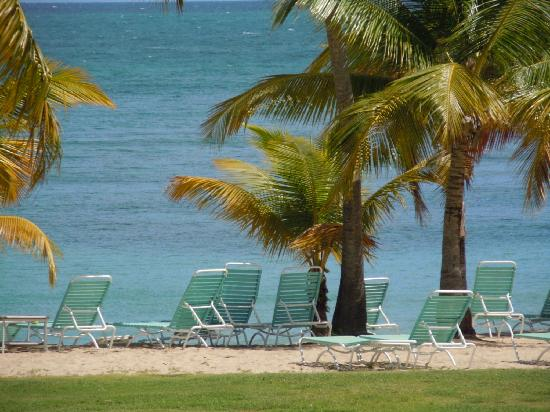 The Buccaneer -- St Croix: Favorite Beach