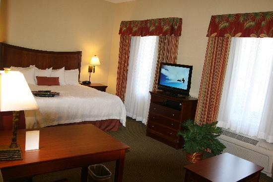 Hampton Inn & Suites Stuart-North: King Suite