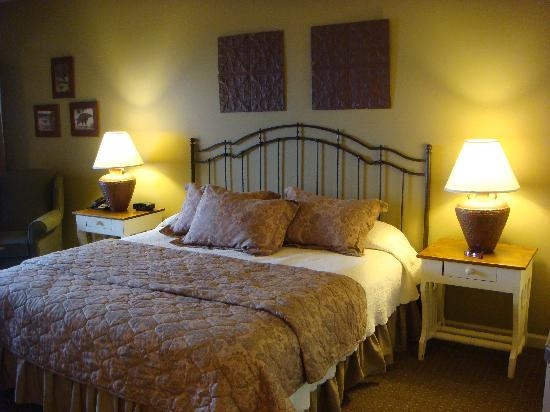 Eagle Rock Resort: the comfy bed, but take caution when looking behind the headboard