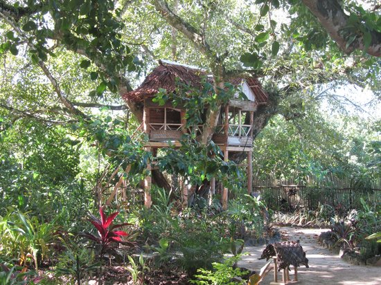 The Mangrove Garden Restaurant & Accommodation