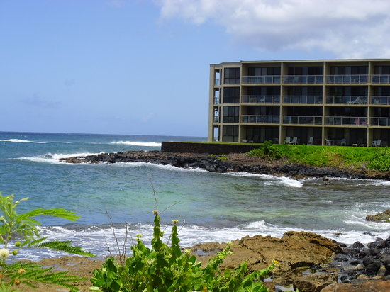 Kuhio Shores Condos: #208 is farthest left on south side of buildingbefore
