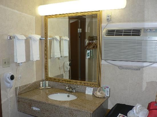 Quality Inn Durango: Sink unit at back of room