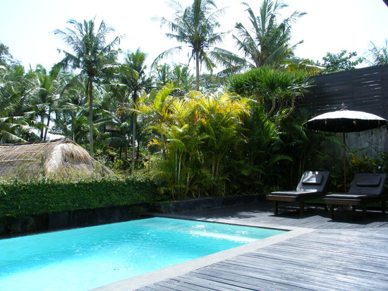 Villa Zest Boutique Hotel: Pool in our Villa