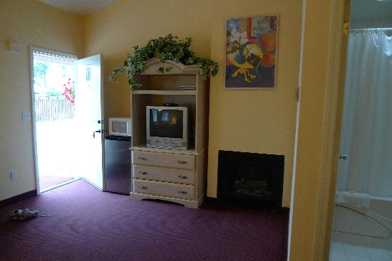 Butterfly Grove Inn: TV with built-in VCR. . .vintage!!