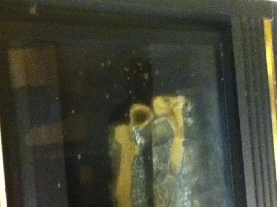 Residence Inn Chicago Schaumburg: Fireplace glass was splattered with something