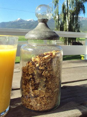 Barking Mad Farm & Country B&B: Diana's homemade granola, yum!