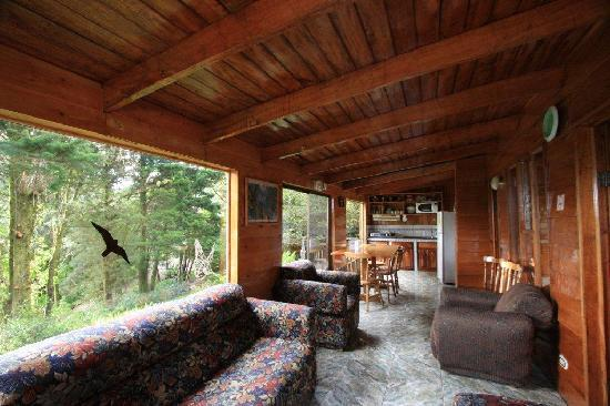 Los pinos cabanas y jardines monteverde cloud forest for Living room of satoshi review