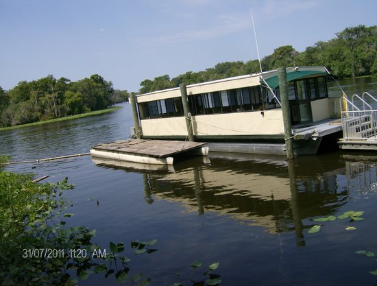 st john river cruises orange city reviews of st john river st johns river cruises 550x417