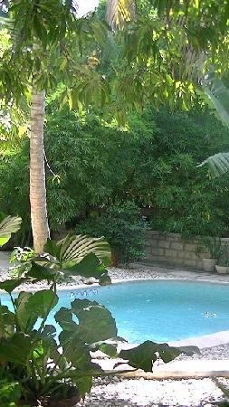 The garden lodge guest house in haiti for Garden pool haiti