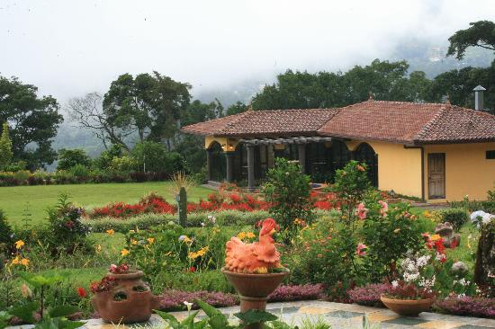 Los Establos Boutique Hotel: Gardens and view to die for!