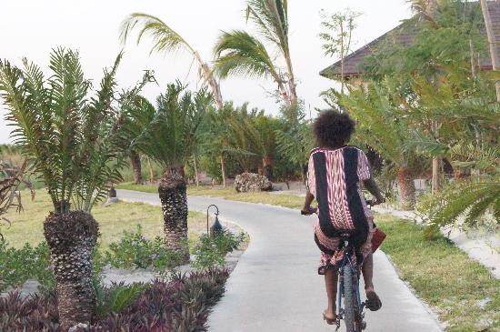 Kizimkazi, Tanzania: riding through the property