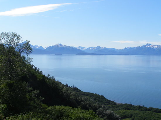 Kenai Peninsula Suites: Our view!