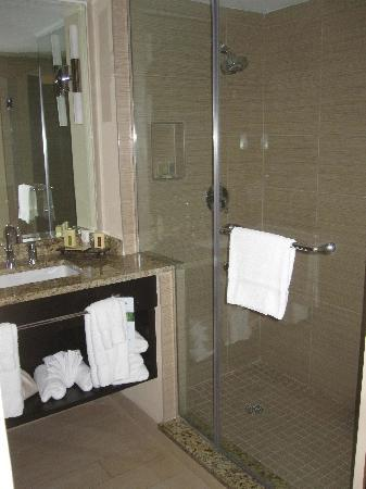 Wyndham Deerfield Beach Resort: Bathroom