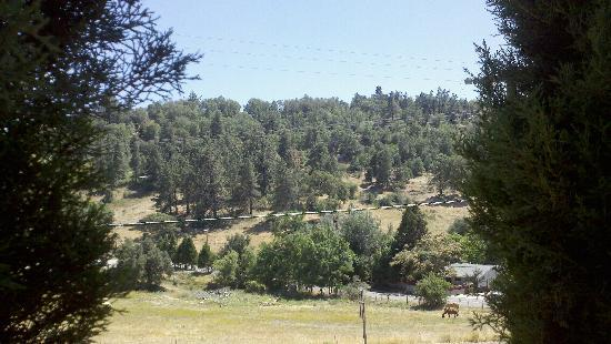 Julian, CA: Beautiful country setting