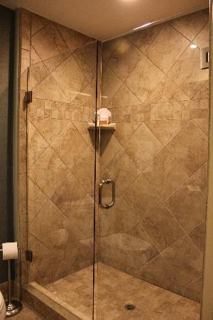 La Bellasera Hotel and Suites: The shower
