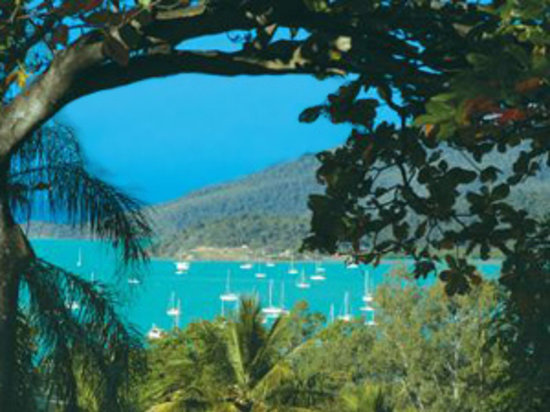 Whitsunday Organic B&amp;B: view from our balcony