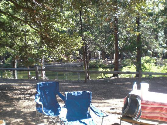 Lower Pines Campground Yosemite National Park Ca