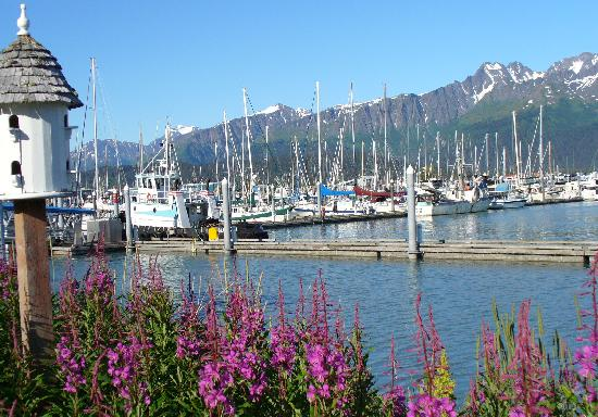 Holiday Inn Express Seward Harbor: Seward near hotel