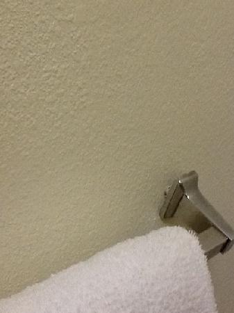 Red Roof Inn Toledo - University: towel rack in bathroom