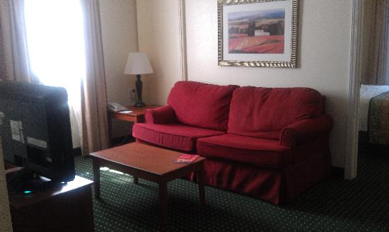 TownePlace Suites Atlanta Kennesaw: Living room - not bad!