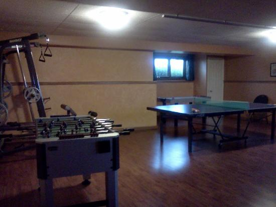 Thamesford, แคนาดา: fun game room in basement - also large tv down here