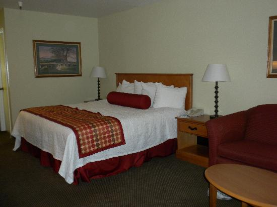BEST WESTERN PLUS Inn Scotts Valley: King Bed