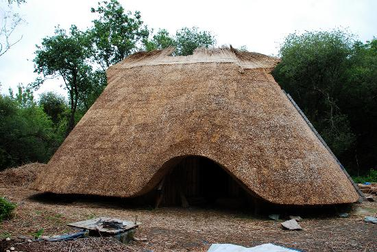 Photos of Irish National Heritage Park, County Wexford