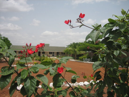Tamale hotels
