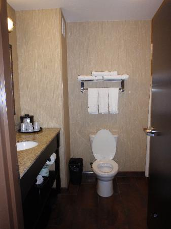 Holiday Inn Express Hotel & Suites Richfield: bathroom