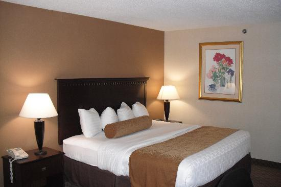 BEST WESTERN PLUS Carrier Circle Syracuse: King Room