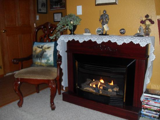 A Mooseberry Inn B&amp;B : Cozy Gas Fireplace in the common area 